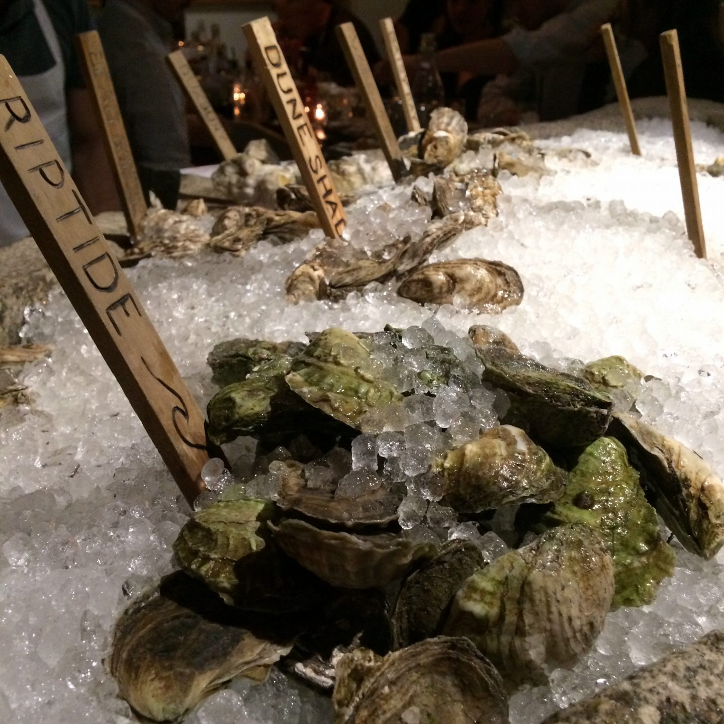 Postcards From Portland: Eventide Oyster Co.
