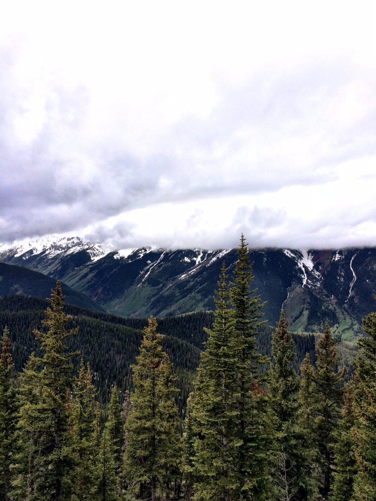 Postcards from Aspen: A Photo Diary
